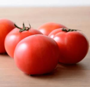 赤土育ちの高糖度「マルトトマト」