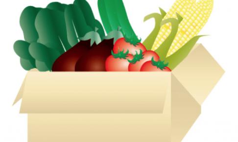 安心安全の食材&値段の安さで選ぶなら、らでぃっしゅぼーやの宅配野菜