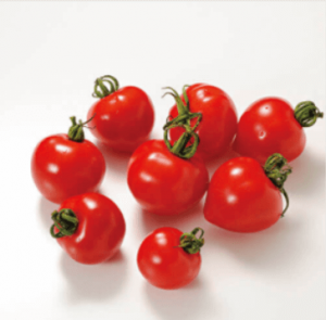 らでぃっしゅぼーやのプチトマト